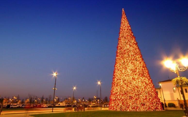 mk illumination acquires barcana - Barcana Christmas Trees